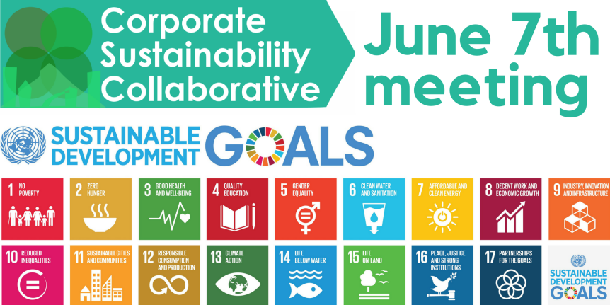 Need a framework for sustainability? Use the UN's Sustainable Development Goals