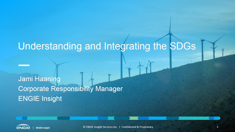 """Understanding and Integrating the SDGs"" presentation cover slide"