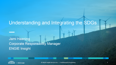 """Understanding and Integrating the SDGs"" presentation cover slide"
